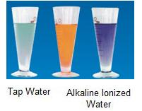Tap Water vs Alkaline Water: Alcohol Experiment